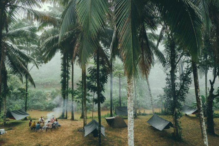 adventure in the jungle with tents and bonfire